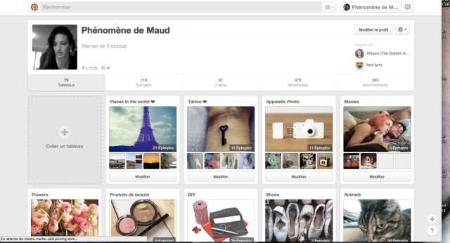 Pinterest phenomene de maud