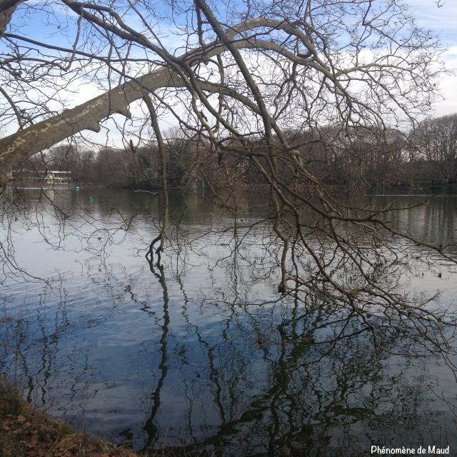 lac parc tête d'or Lyon