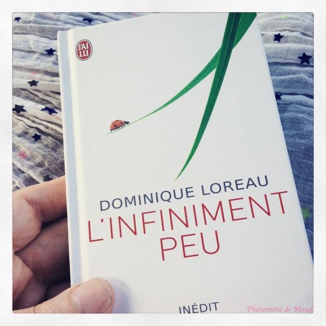 livre de Dominique Loreau
