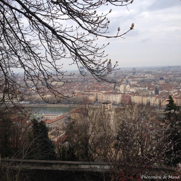 vue sur Lyon depuis fourvière