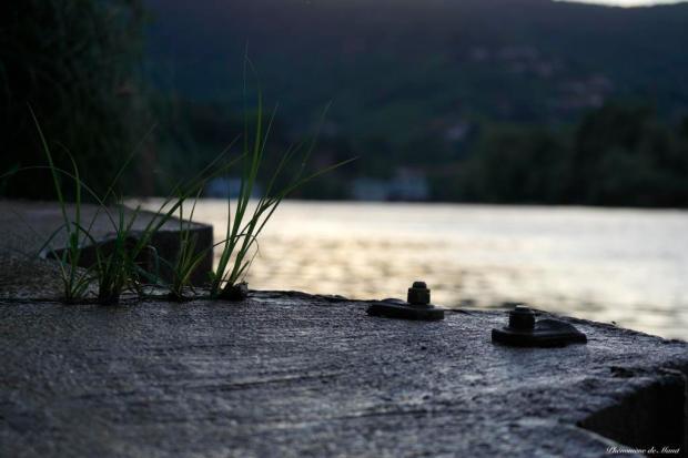 au bord de l eau