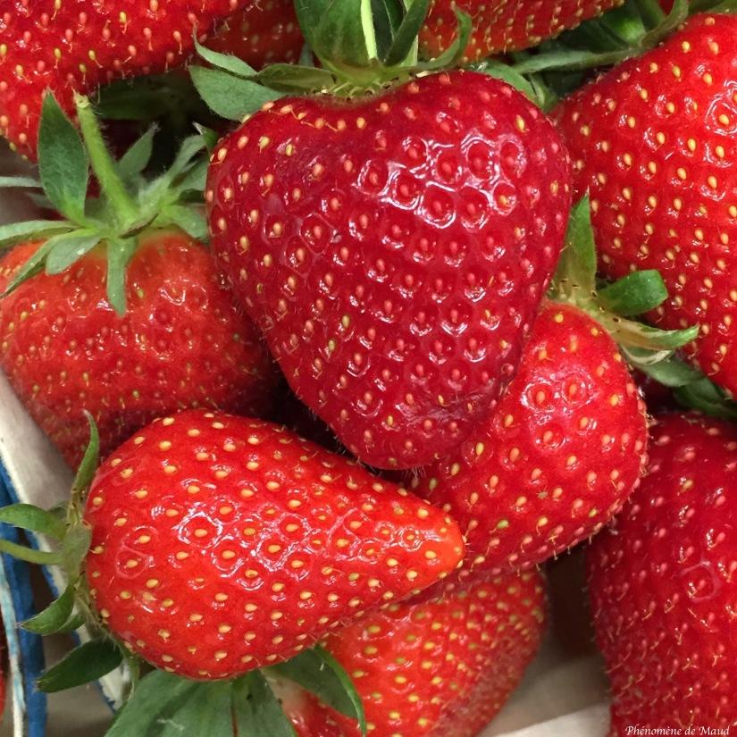 fraises.jpg