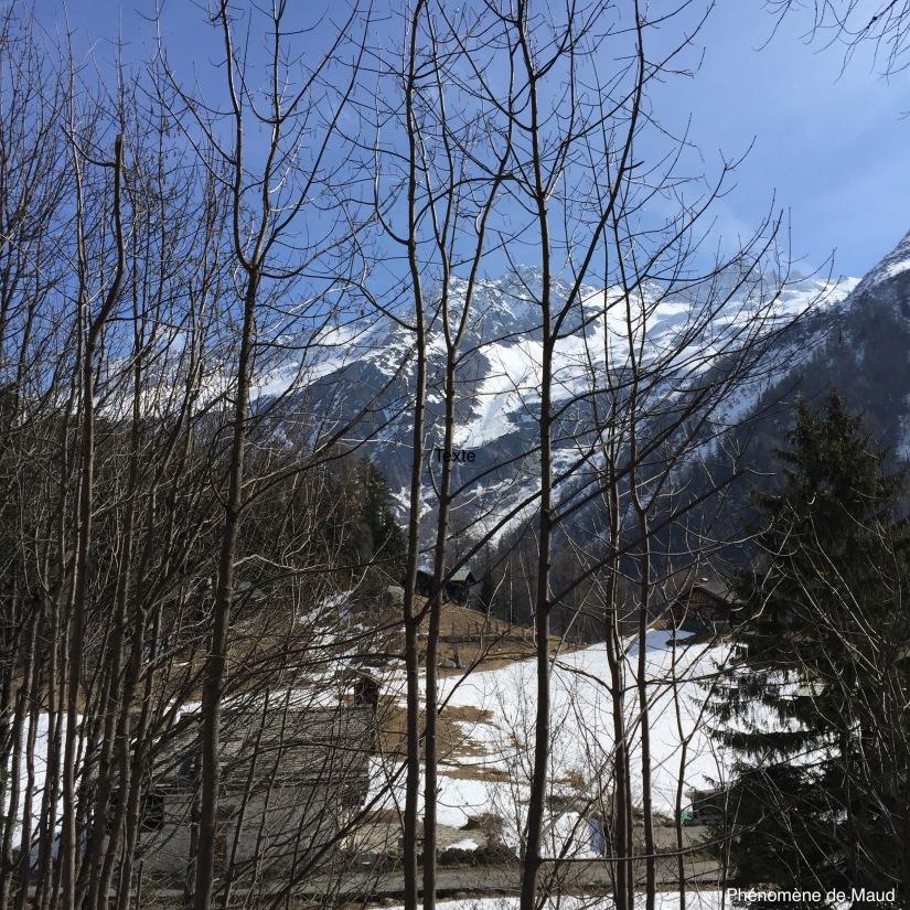 paysage montagnard