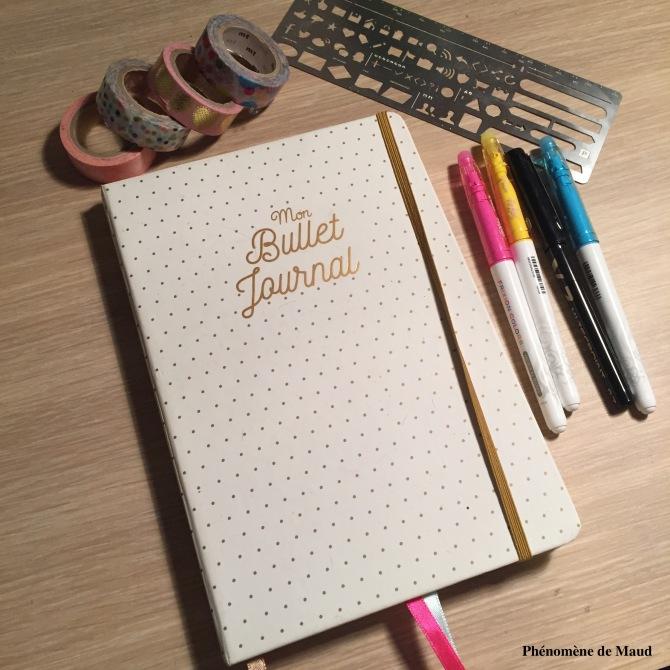 Bullet journal et stylos
