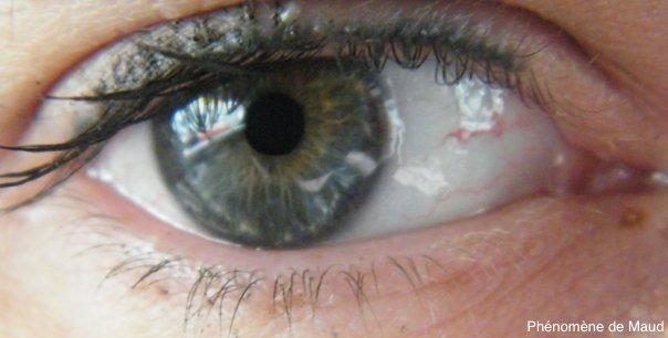 mon oeil.jpg