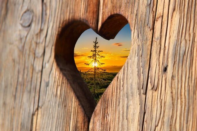 heart-2041866_960_720.jpg