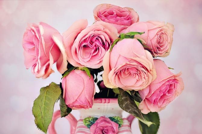 roses-3194057_960_720.jpg