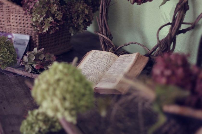 book-1210027_960_720.jpg