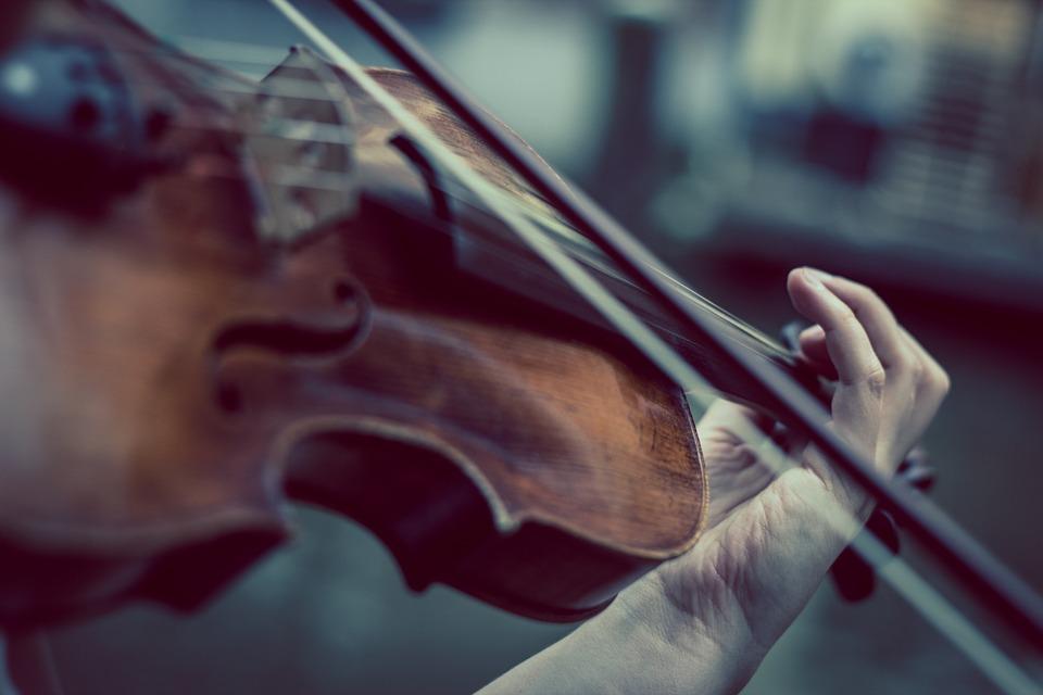 violon phenomene de maud.jpg