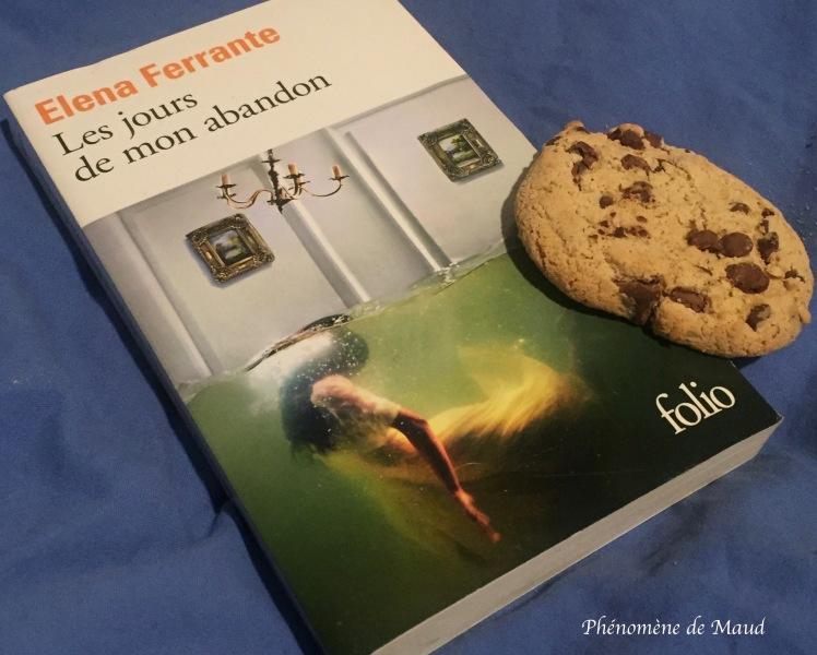 livre elena ferrante phenomene de maud cookie.jpg