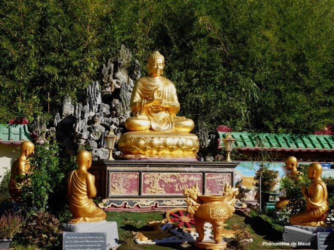 bouddha phenomene de maud