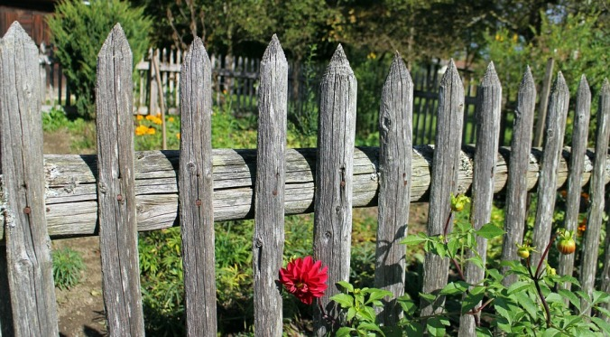 garden-fence-484708_960_720.jpg