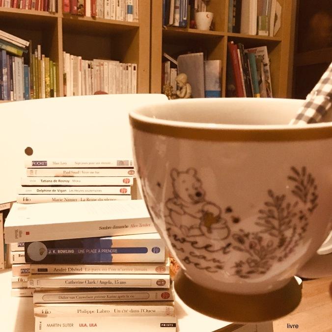 pile à lire livres phenomene de maud tasse winnie the poohjpeg