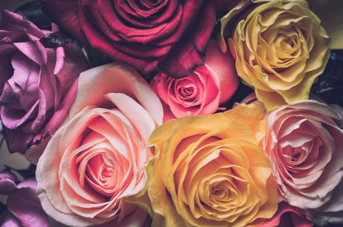 bouquets de roses.jpg