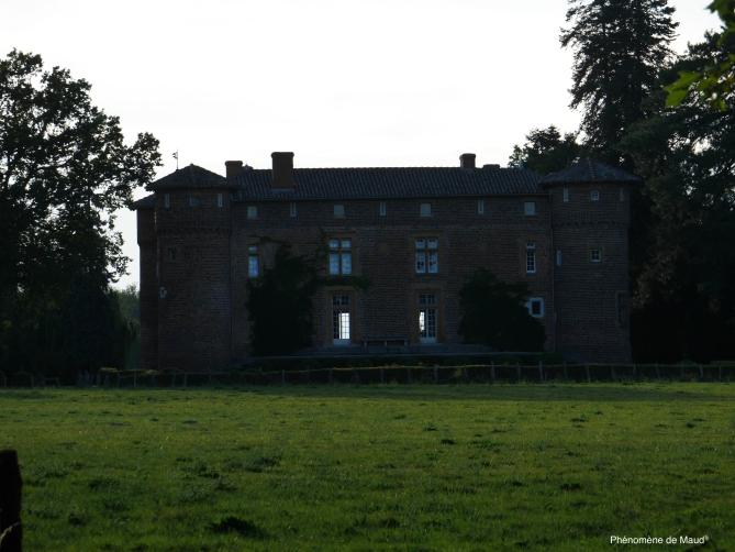 chateau phenomene de maud.jpg