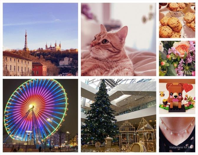Collage-19.jpg