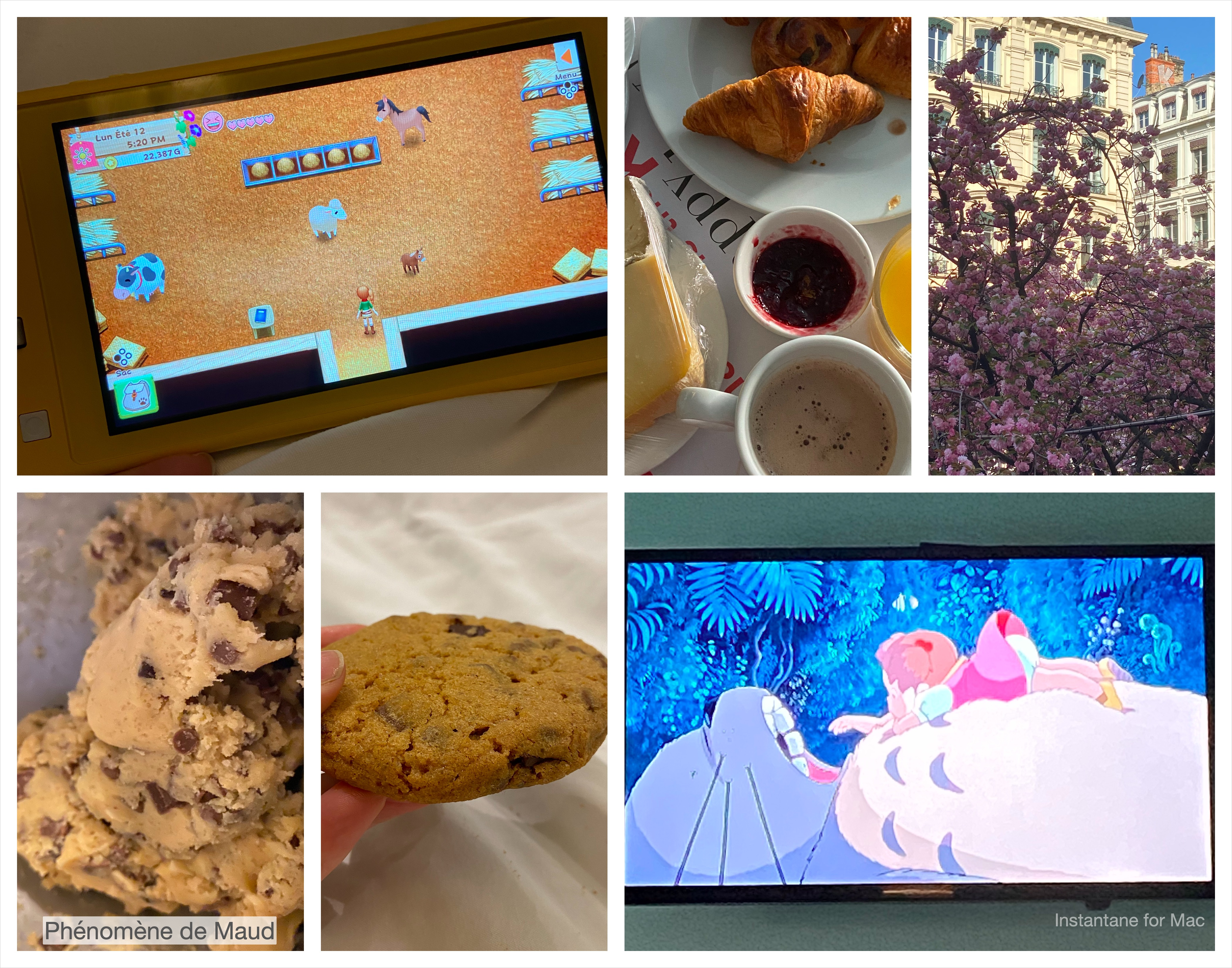 jeudi 2 avil console petit dejeuner lyon cookies studios ghibli
