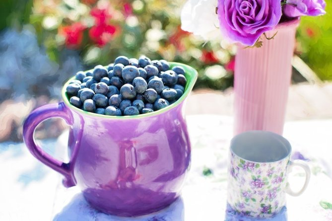 blueberries-864628_1280